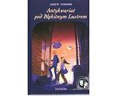 Szczegóły książki ANTYKWARIAT POD BŁĘKITNYM LUSTREM