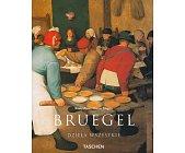 Szczegóły książki PIETER BRUEGEL STARSZY (OKOŁO 1525-1569) - CHŁOPI, DZIWACY I DEMONY