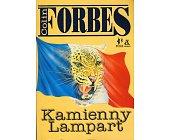 Szczegóły książki KAMIENNY LAMPART