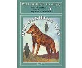 Szczegóły książki NA ŁAMACH 5 - OLD-FASHION MAN