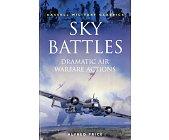 Szczegóły książki SKY BATTLES