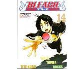 Szczegóły książki BLEACH - 14 - WHITE TOWER ROCKS