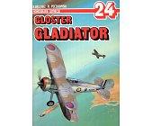 Szczegóły książki GLOSTER GLADIATOR - MONOGRAFIE LOTNICZE NR 24