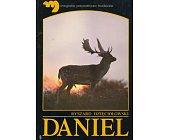 Szczegóły książki DANIEL