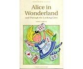 Szczegóły książki ALICE IN WONDERLAND AND THROUGH THE LOOKING GLASS