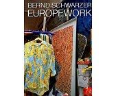Szczegóły książki EUROPEWORK