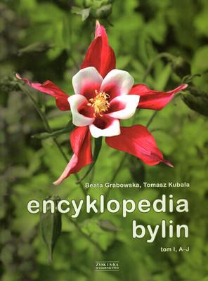ENCYKLOPEDIA BYLIN - 2 TOMY