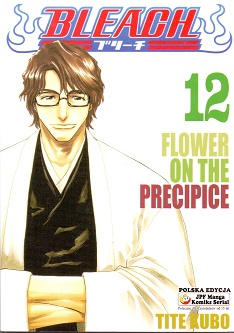 BLEACH - 12 - FLOWER ON THE PRECIPICE