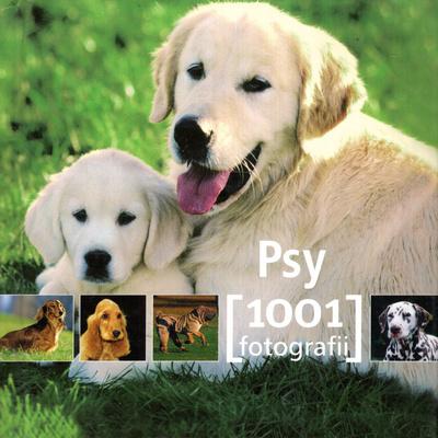 PSY 1001 FOTOGRAFII