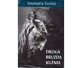 Szczegóły książki DROGA BRUZDA KUŹNIA