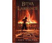 Szczegóły książki BITWA W LABIRYNCIE