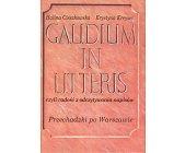 Szczegóły książki GAUDIUM IN LITTERIS, CZYLI RADOŚĆ Z ODCZYTYWANIA NAPISÓW