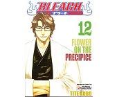 Szczegóły książki BLEACH - 12 - FLOWER ON THE PRECIPICE