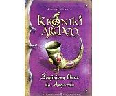 Szczegóły książki KRONIKI ARCHEO - TOM 6 - ZAGINIONY KLUCZ DO ASGARDU