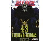 Szczegóły książki BLEACH - 43 - KINGDOM OF HOLLOWS