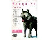 Szczegóły książki BANQUISE. W KRAINIE BEZ CIENIA