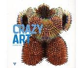 Szczegóły książki CRAZY ART