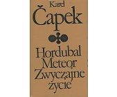 Szczegóły książki HORDUBAL, METEOR, ZWYCZAJNE ŻYCIE