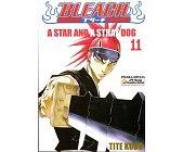 Szczegóły książki BLEACH - 11 - A STAR AND A STRAY DOG