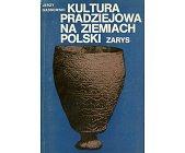Szczegóły książki KULTURA PRADZIEJOWA NA ZIEMIACH POLSKICH - ZARYS