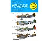 Szczegóły książki SAMOLOT MYŚLIWSKI P-47 THUNDERBOLT