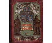 Szczegóły książki DZIEJE POLSKI ILUSTROWANE - 2 TOMY