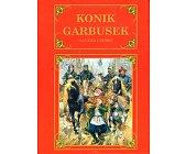 Szczegóły książki KONIK GARBUSEK