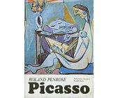 Szczegóły książki PICASSO