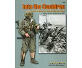 Szczegóły książki INTO THE CAULDRON, DAS REICH ON THE EASTERN FRONT